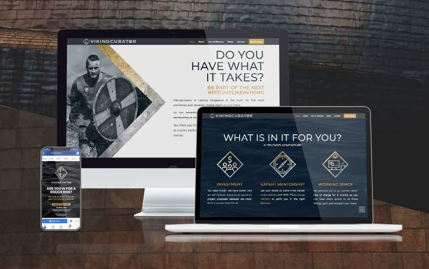 Vikingcubator Website