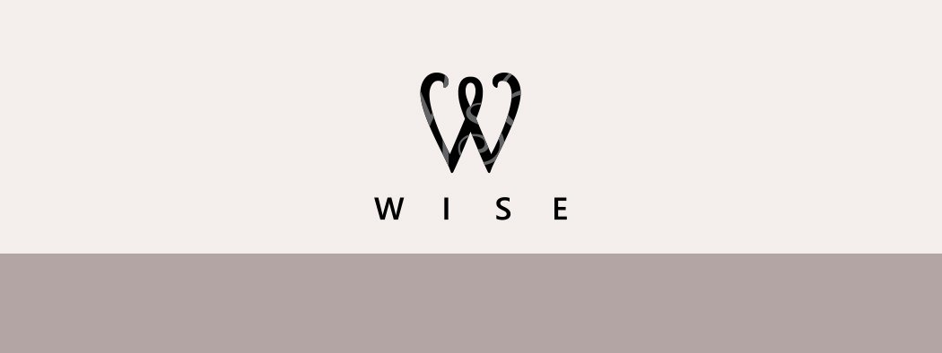Wise Enterprise Branding and Website