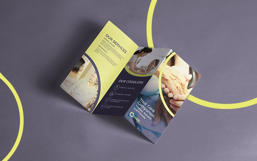 Coddle Branding and Marketing Campaign