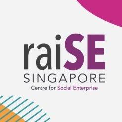 raiSE incubation programme 2018