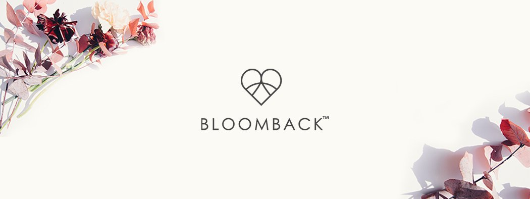 Bloomback Branding Header