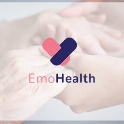Emohealth Workshop and Branding